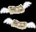 デジタル遺品整理の重要性!お金が知らない間に引落しされ続ける危険性